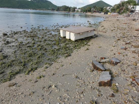 Lover Bay Beach Cafe Hostel: Strand