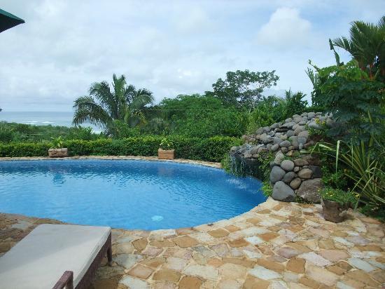 Hotel Casa Chameleon: Pool