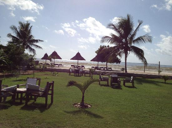 Kijiji Beach Resort: Looking out onto the grounds from the restaurant patio.