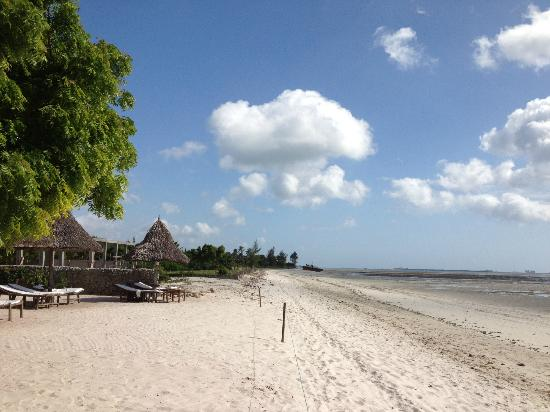 Kijiji Beach Resort: On the beach.