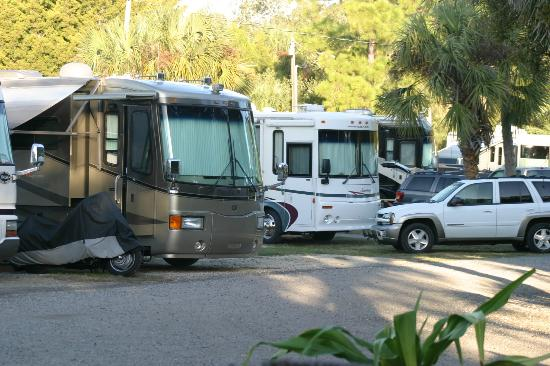 Sunset Isle RV Park & Motel: Park Shot