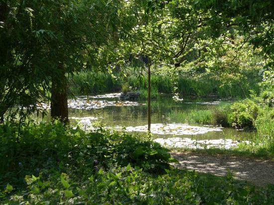 Myddelton House Gardens: Beautiful enchanting Lily Pond