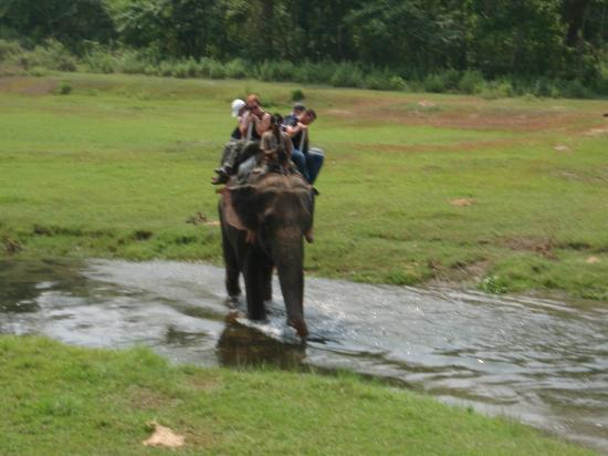 Royal Park Hotel: Elephant safari tour