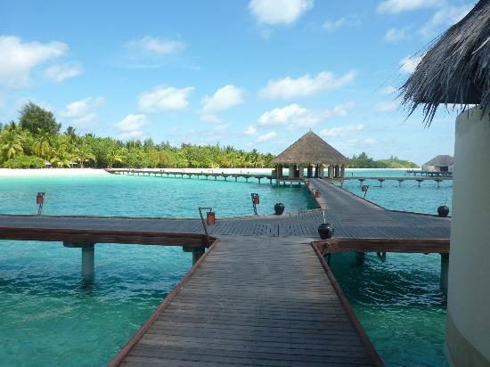 Kanuhura - Maldives: WASSERVILLEN - STEG