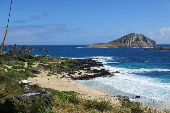 Oahu Grand Circle Island Tour: North shore