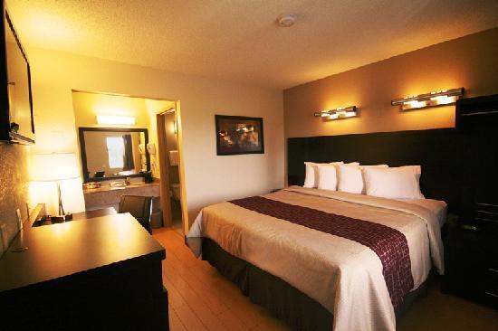 Red Roof Inn Sacramento - Elk Grove: Superior King Room