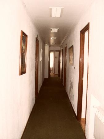 Hostal Veracruz II: Hall