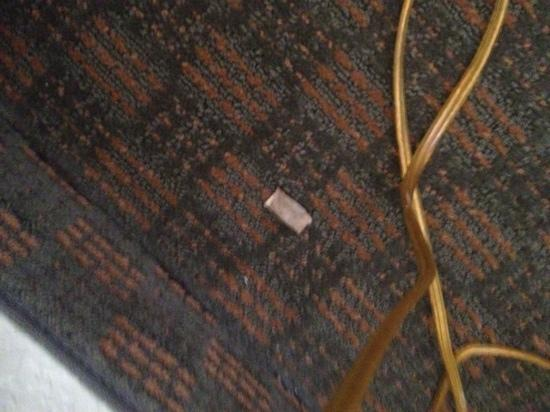 Country Inn & Suites By Carlson, Port Canaveral: Used tobacco chew on floor next to bed