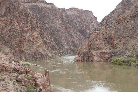 Inner Canyon: at the river