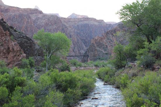 Inner Canyon: on Bright angel trail