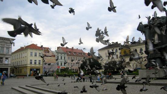Kuznia Hotel : Main square