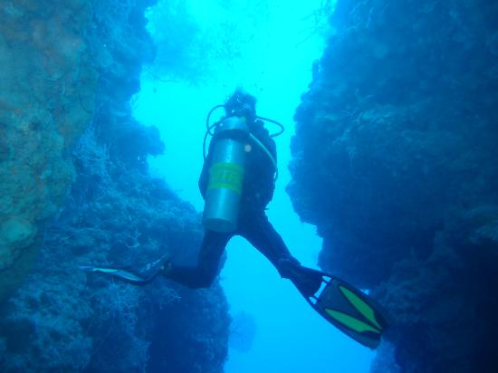 Naya Gawana Resort & Spa: Diving Master