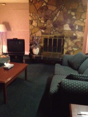 Econo Lodge Motel Village: Living room with beautiful fireplace