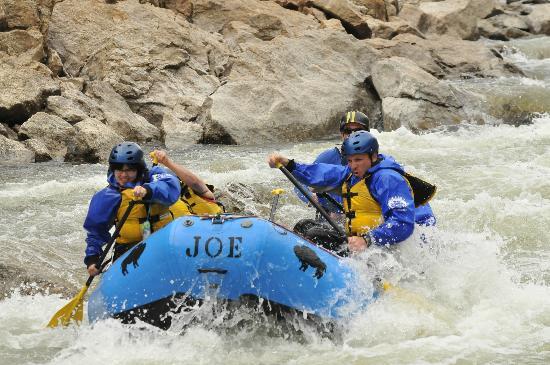 Buffalo Joe's Whitewater Rafting : Brown's Canyon