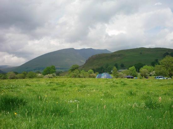 Dalebottom Farm Caravan & Camping Park: view from the tent
