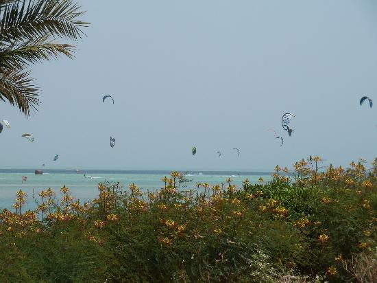 Movenpick Resort & Spa El Gouna: Kite Surfers Paradise?