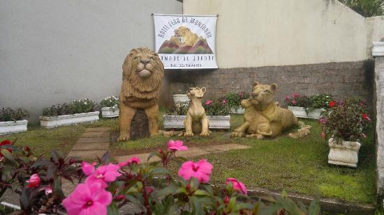 Hotel Leao da Montanha: Statues in front of the hotel