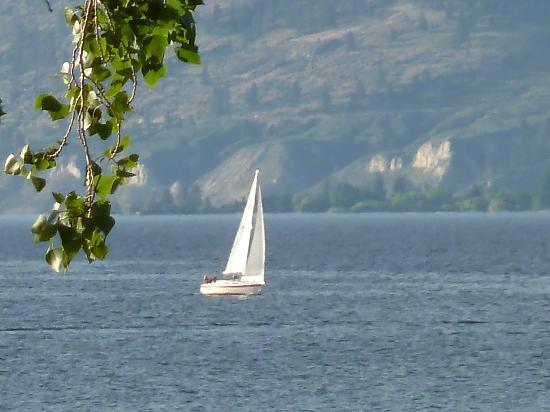 Casa Grande Inn: Walk to the marina and yacht club