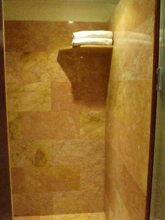 Walk in shower area with a towel shelf. There is a bench area as ...