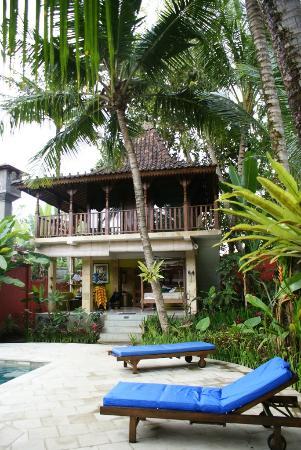 Desa Sanctuary, The Village : Another bigger house