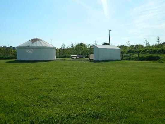 Ty Parke Farm Camping: Meadow yurt