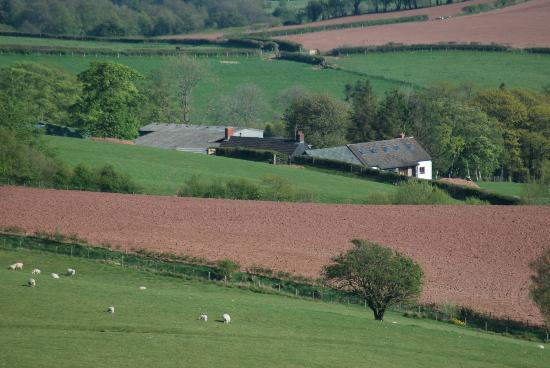 Bryn Y Fedwen Farm : View from the hill .. you just see the farmhouse below in the middle of the photo