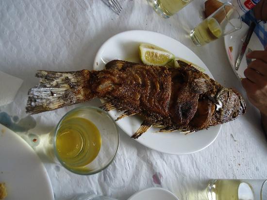 Casa Africa - Bar Playa: fried fish