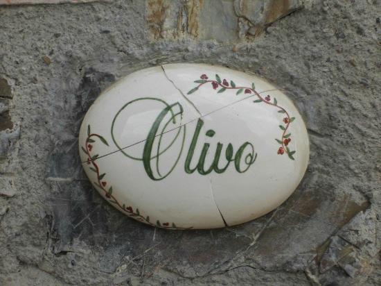 Casa Guaitoli: Appartamente Olivo, consigliato! :D