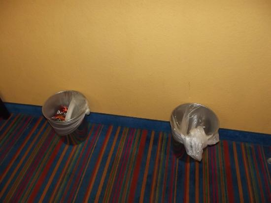 Coco Key Hotel and Water Park Resort : These are the two garbage cans that the water dripped in