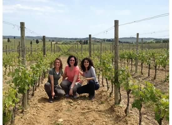 Wine Tour Adventure: Inspecting this year's crop