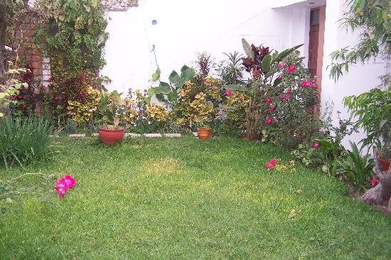 Las Palmeras Inn : Jardín