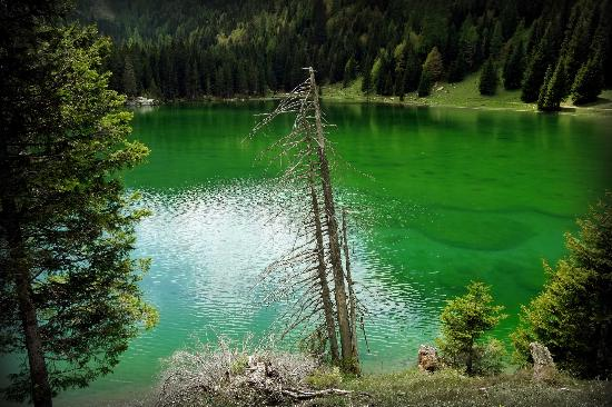 Chalet Fogajard: emerald colored lake