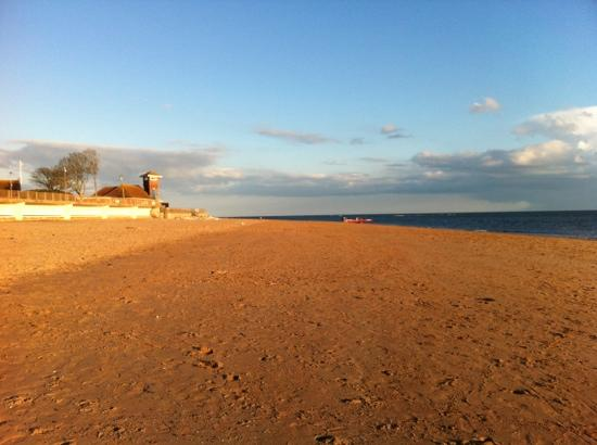 The Swallows Guest House: exmouth beach