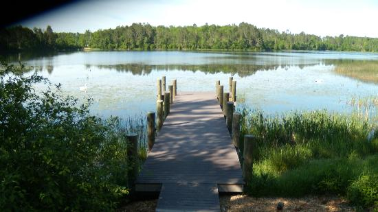 Heartwood Conference Center & Retreat: View from the dock in front of the Eagle Lodge