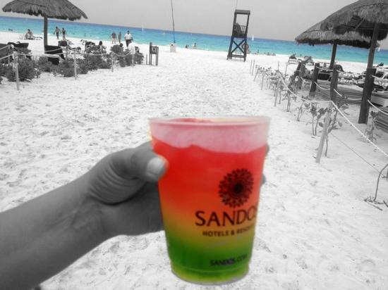Sandos Playacar Beach Resort: salud!!!