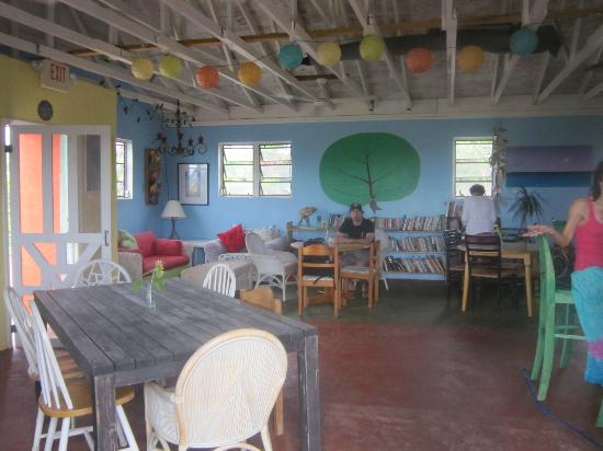 Laughing Lizard Cafe: interior