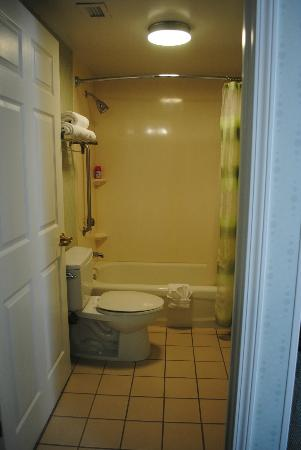 SpringHill Suites Atlanta Buford/Mall of Georgia : Tub/Shower/Toilet