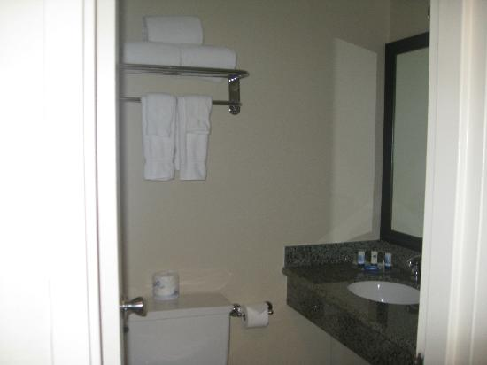 Hotel Somerset-Bridgewater : Bathroom