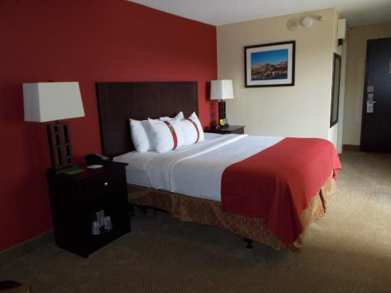 Holiday Inn World's Fair Park-Knoxville: King room