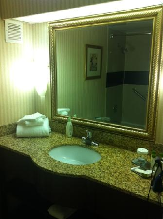 DoubleTree by Hilton Hotel Cleveland-Independence: bathroom