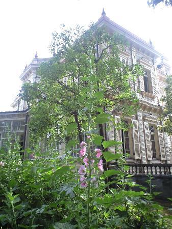Kyu Iwasaki-tei Teien: タチアオイが美しく咲いていました。
