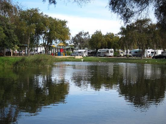 Karrinyup Waters Resort: View from the back of the lake