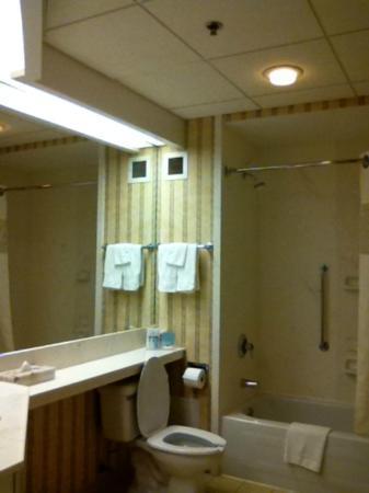 Hampton Inn by Hilton Ottawa: Washroom