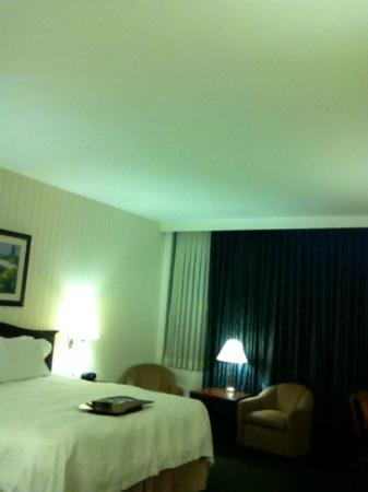 Hampton Inn by Hilton Ottawa: King room