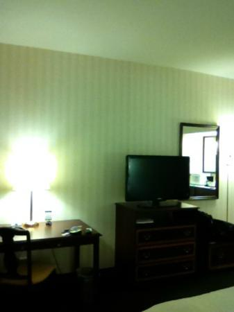 Hampton Inn by Hilton Ottawa: LCD TV