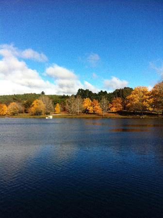 Lake Canobolas: lovely May day at lake