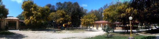 Narbolia, Itália: Panoramica servizi