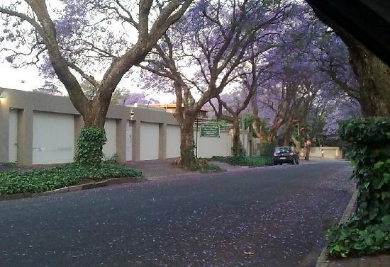 Rosebank Lodge Guest House: Guest House Street