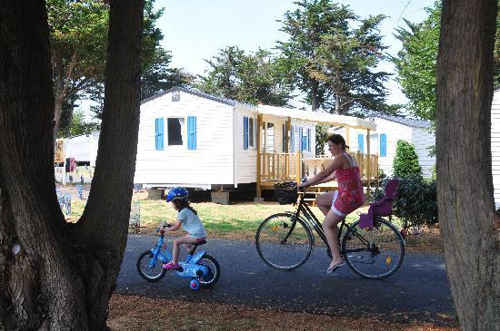 Camping Val de Loire en Ré (Le Bois Plage en Re, France) voir les tarifs et avis camping  # Location Mobil Home Ile De Ré Bois Plage