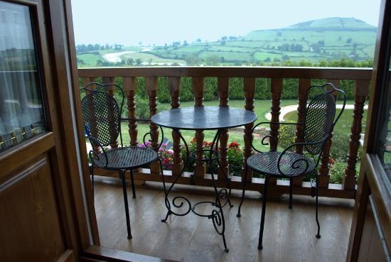 Hotel Senorio de Altamira: Vista desde la habitación